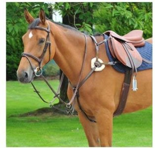 EPONA Horse 5 Point Breastplate Black Stop Sign Stainless Steel